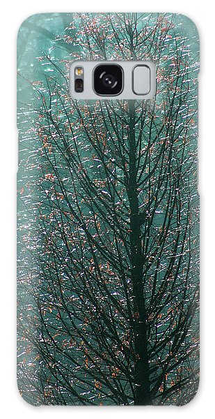 Tree In Autumn, With Red Leaves, Blue Background, Sunny Day Galaxy Case
