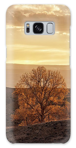 Tree In Desert At Sunset Galaxy Case