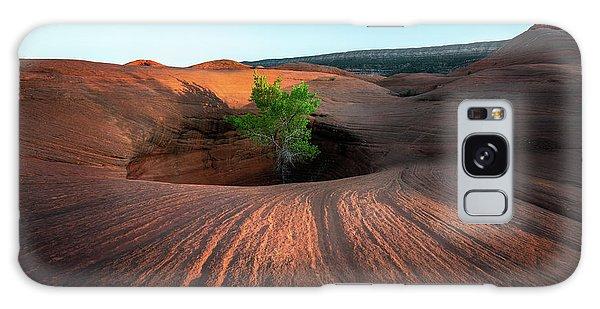 Tree In Desert Pothole Galaxy Case