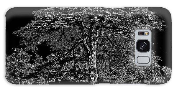 Tree In England Galaxy Case