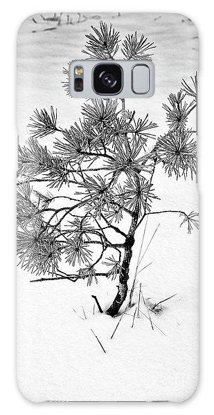 Tree In Winter Galaxy Case