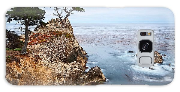 Tree Galaxy Case - Tree Of Dreams - Lone Cypress Tree At Pebble Beach In Monterey California by Jamie Pham
