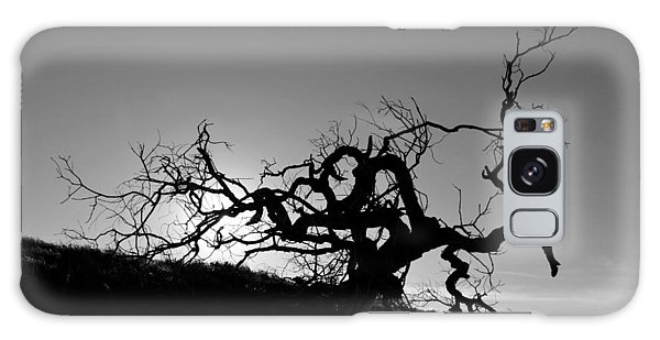 Tree Of Light Silhouette Hillside - Black And White  Galaxy Case