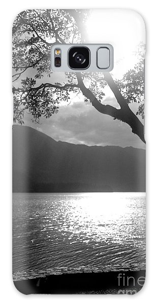 Tree On Lake Galaxy Case