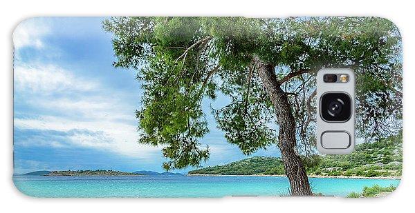 Tree On Northern Dalmatian Coast Beach, Croatia Galaxy Case