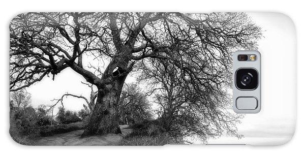 Tree On Ridge - Black And White Galaxy Case