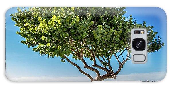 Tree On The Bay Galaxy Case
