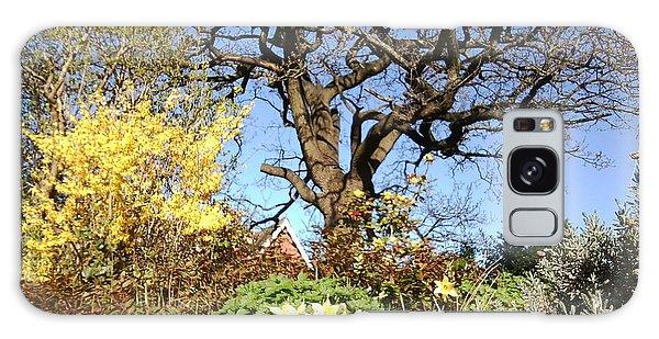 Tree Photo 991 Galaxy Case