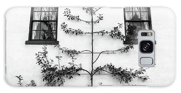 Tree Sculpture Galaxy Case