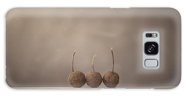 Indoors Galaxy Case - Tree Seed Pods by Scott Norris