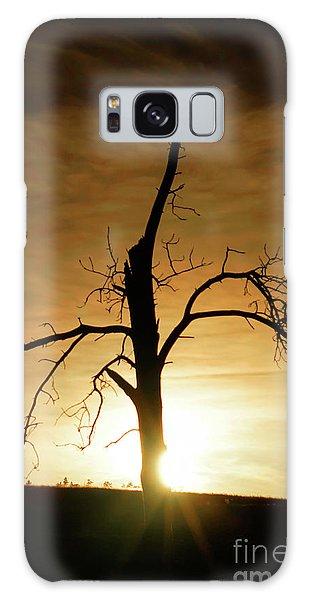 Tree Silhouette At Sundown Galaxy Case