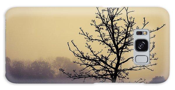 Fog Galaxy Case - Tree Silhouette On A Foggy Morn by Tom Mc Nemar