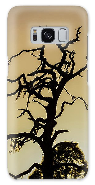Tree Silhouette Galaxy Case