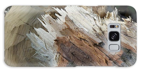 Tree Stump Galaxy Case