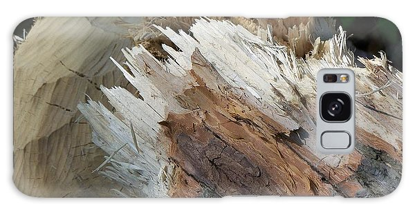 Tree Stump Galaxy Case