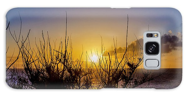 Tree Sunset Galaxy Case