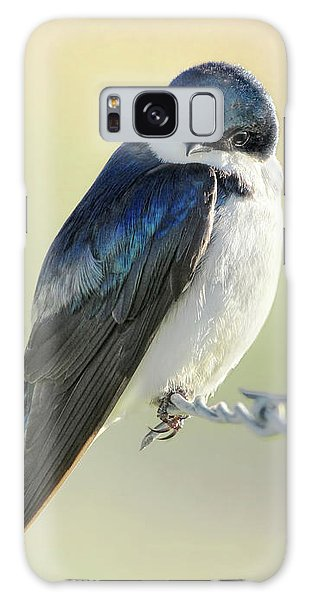 Galaxy Case featuring the photograph Tree Swallow by Jennie Marie Schell