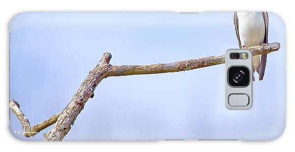 Tree Swallow On Branch Galaxy Case