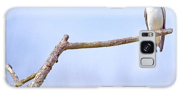 Tree Swallow On Branch Galaxy Case by A Gurmankin