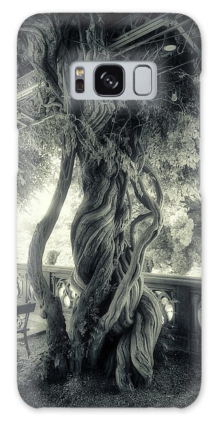 Tree Trunk Bw Series Y6693 Galaxy Case