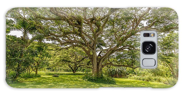 Treebeard Galaxy Case