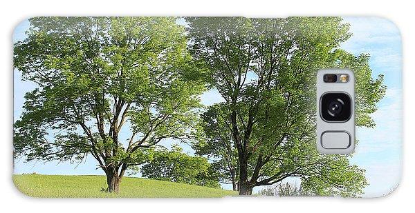 Summer Trees 4 Galaxy Case
