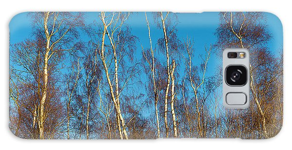Trees And Blue Sky Galaxy Case