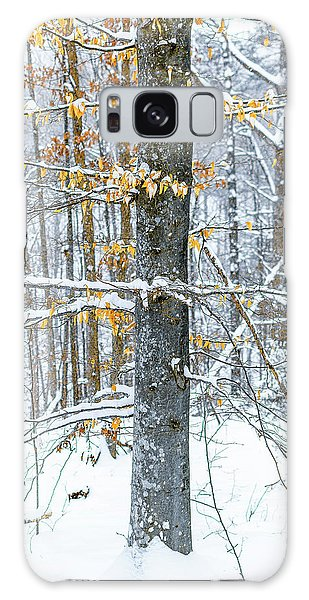 Trees In Snow Galaxy Case