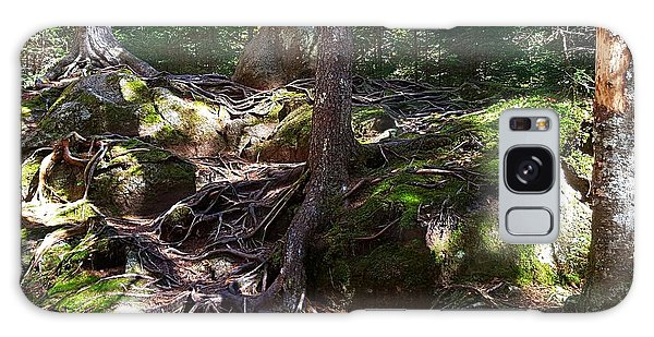 Trees - Mont Tremblant National Park Galaxy Case