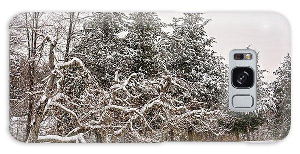 Trees Of Winter Galaxy Case