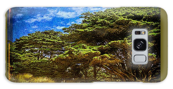 Trees On An Oregon Beach Galaxy Case