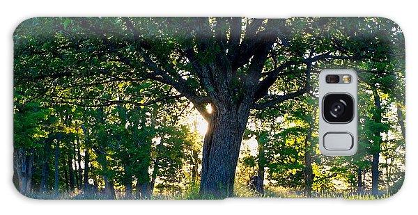 Treescape Galaxy Case