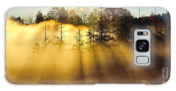 Treetop Shadows Galaxy Case