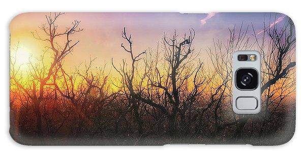 Treetop Silhouette - Sunset At Lapham Peak #1 Galaxy Case by Jennifer Rondinelli Reilly - Fine Art Photography