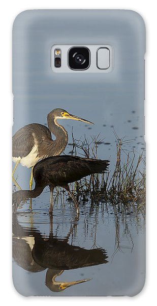 Tri-colored Heron And Glossy Ibis Galaxy Case