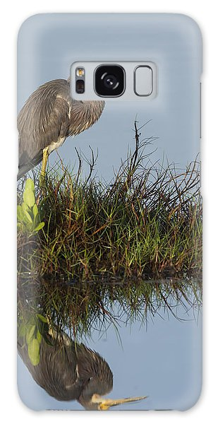 Tri-colored Heron And Reflection Galaxy Case