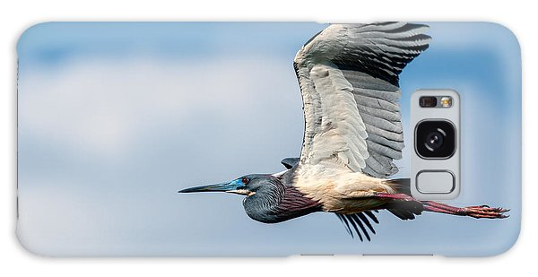 Tri-colored Heron In Flight Galaxy Case