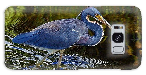 Tricolor Heron Galaxy Case