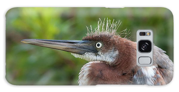 Tricolored Heron - Bad Hair Day Galaxy Case