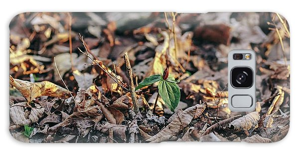 Trillium Blooming In Leaves On Forrest Floor Galaxy Case