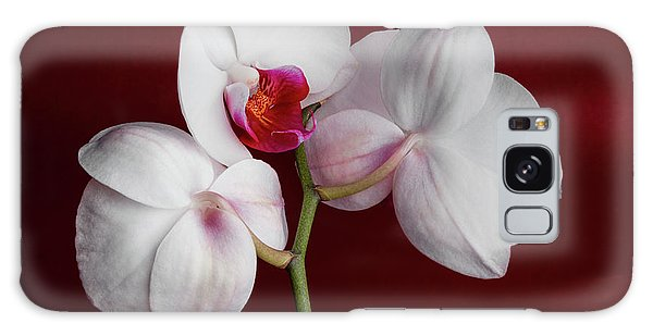 Orchidaceae Galaxy Case - Trio Of Orchids by Tom Mc Nemar