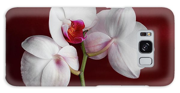 Orchid Galaxy S8 Case - Trio Of Orchids by Tom Mc Nemar