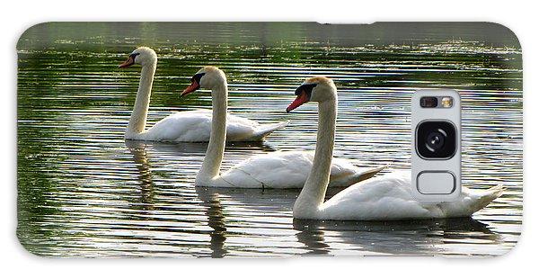 Triplet Swans Galaxy Case