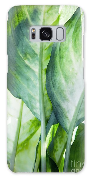 Leaf Galaxy Case - Tropic Abstract  by Mark Ashkenazi