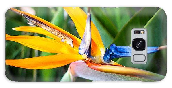 Tropical Closeup Galaxy Case