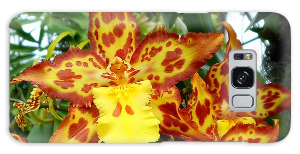Tropical Red And Yellow Orchids Galaxy Case