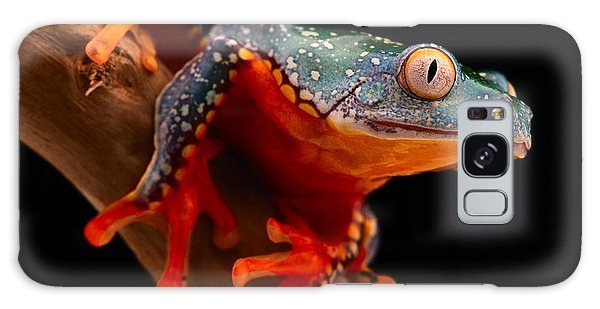 tropical tree frog Cruziohyla craspedotus Galaxy Case by Dirk Ercken