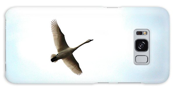 Trumpeter Swan In Flight Galaxy Case