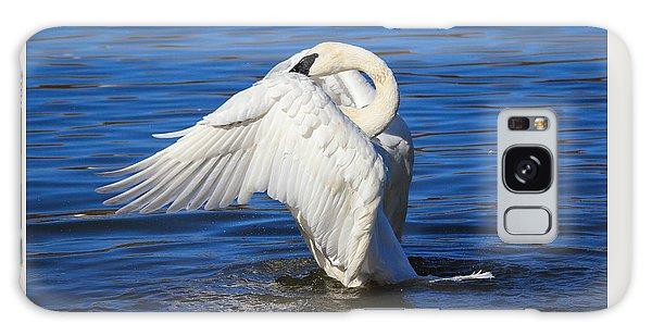 Trumpeter Swan  Galaxy Case