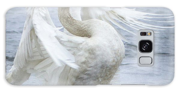 Trumpeter Swan - Misty Display 2 Galaxy Case